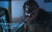 Fido - Underworld Awakening